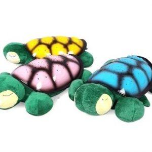 Popularne VELIKE zvezdane kornjače_2