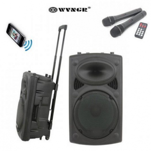 WVNGR WG12 karaoke zvučnik sa akumulatorom 120W_2