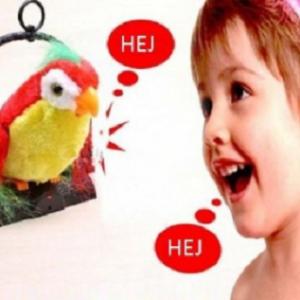 Papagaj koji govori - talking parrot_2