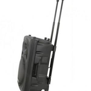WVNGR WG12 karaoke zvučnik sa akumulatorom 120W_1