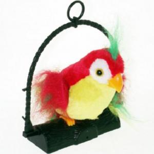 Papagaj koji govori - talking parrot_1