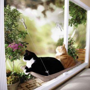 Krevet za mačke na prozoru