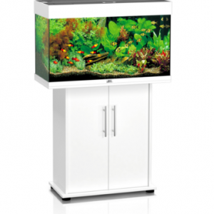 Juwel akvarijum - Rio 125