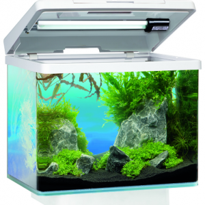 Juwel akvarijum - Vio 2