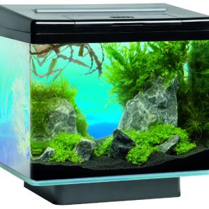 Juwel akvarijum - Vio 3